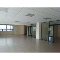 Rento Oficina En Z13 Edificio Condesa Ii, Oficina 202